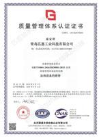 匹恩-质量体系认证证书中文版